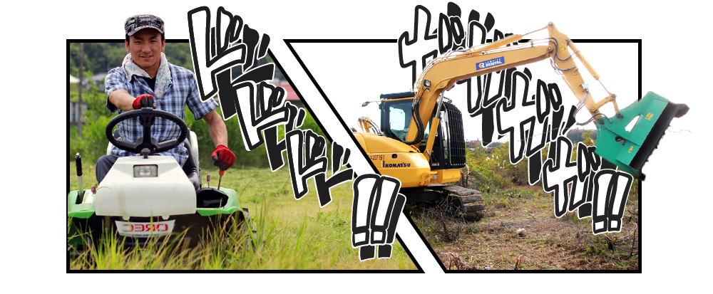草刈り実施