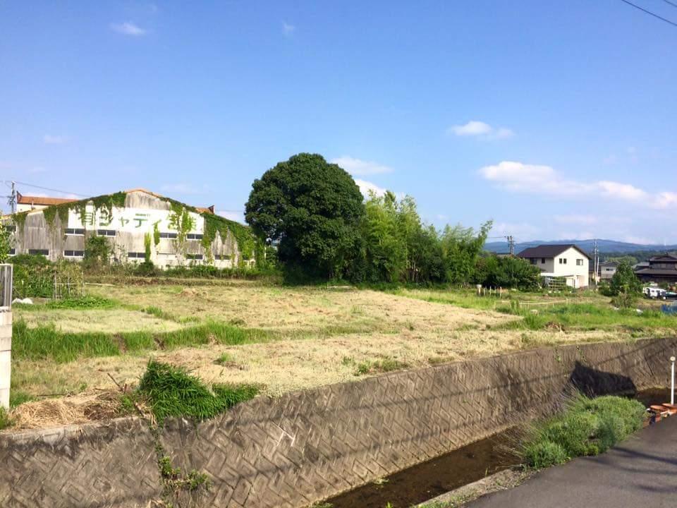 ダイマツ 草刈り 風景
